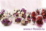 Оптовая продажа живых цветов в вакууме Спецпредложение
