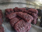 Картофель свежий урожай 2016 года в Перми